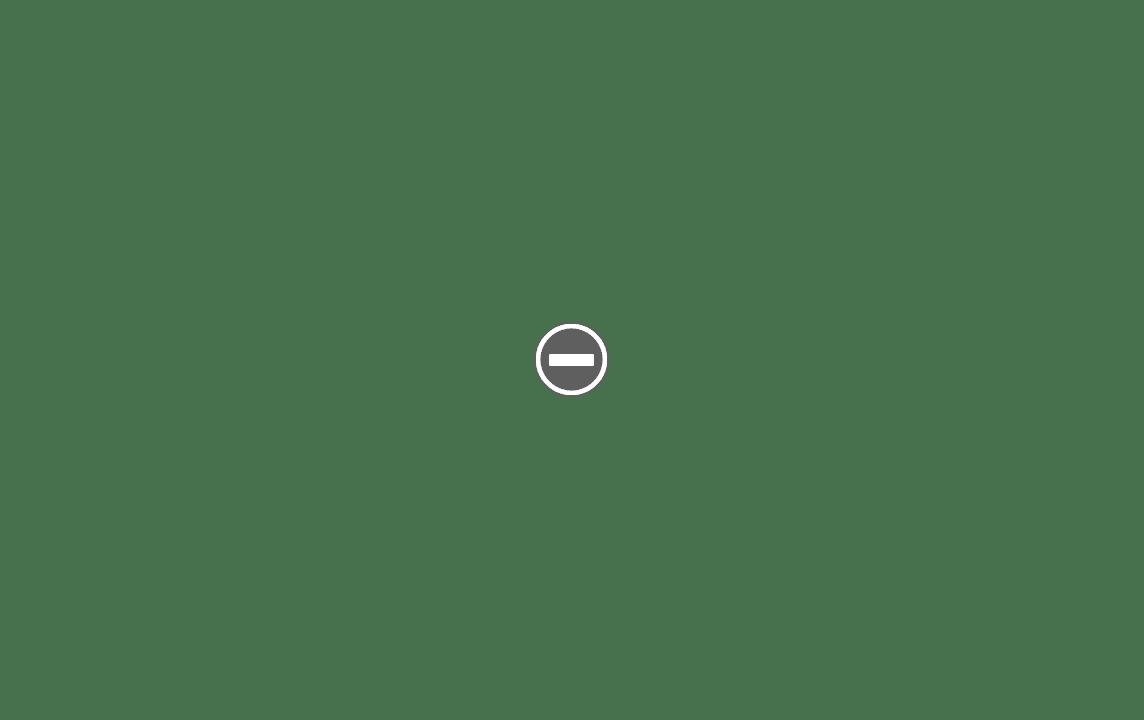 "VALENCIA ou les ""slant"" à Peigne Ouvert Made in France... IMG_1785%2B%28Custom%29"