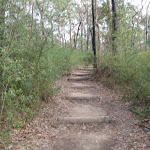 Steps in track near Red Hands Cave car park (145458)