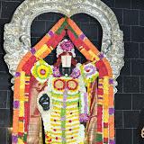 Navarati & Srinivasa ThiruNakshatram