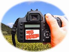 デジタルカメラで撮影した写真をコンテストに応募してみませんか?