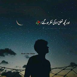Ashiq Hussain review