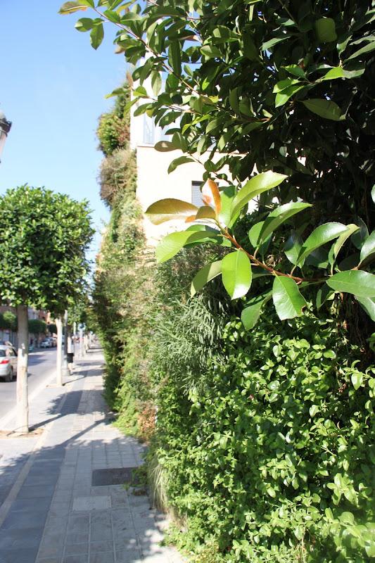 Fachada vegetal de Paterna, Valencia.