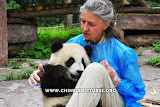 Foreigner and Chinese Panda Photo 2