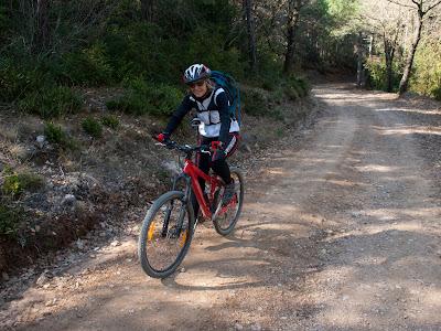 Pujarem per la pista uns 12 quilòmetres, remuntant el barranc de Barcedana fins al cap d'amunt de la vall