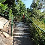 Steps on track in Cremorne Reserve (258800)
