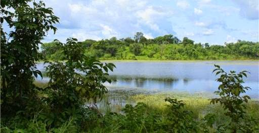Rio Gâmbia