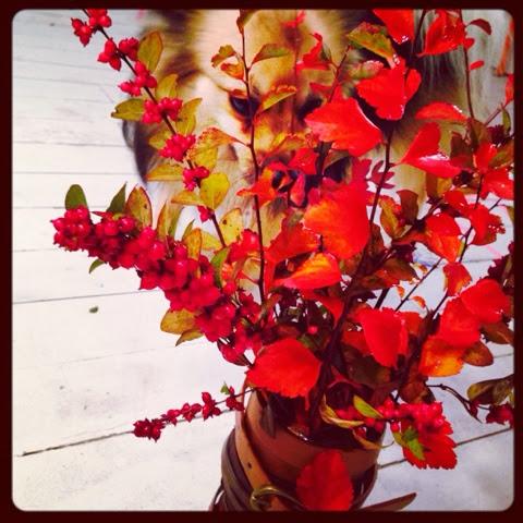 Diy vase et bouquet d 39 automne caract rielle - Bouquet d automne ...