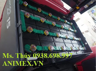 Bình acquy xe nâng hàng Hitachi Kobe 48V-450AH 0937782768