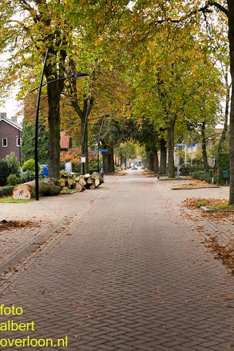 Bomen gekapt Museumlaan in overloon 20-10-2014 (48).jpg