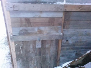 outside of free-range chicken coop - nest box, water door and food door