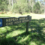 Nepean River track sign near Darug campsite (189729)