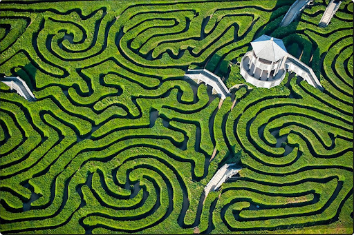 The world from above - Maze at Longleat, England.jpg