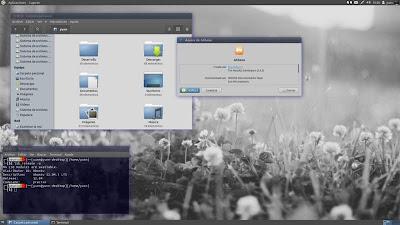 Consort Desktop – Athena 1.0 en ubuntu Precise
