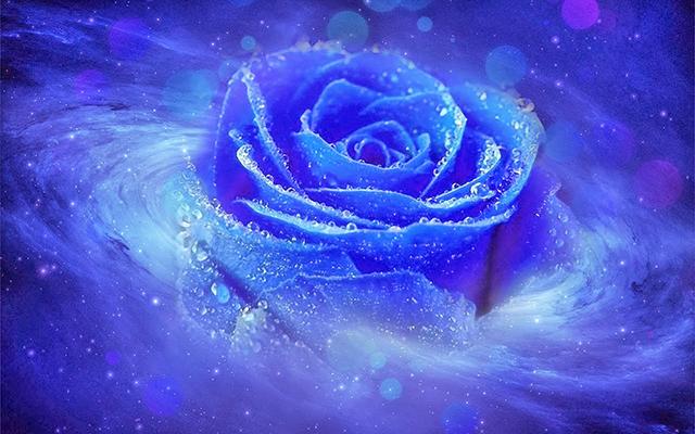 vũ trụ hoa hồng xanh