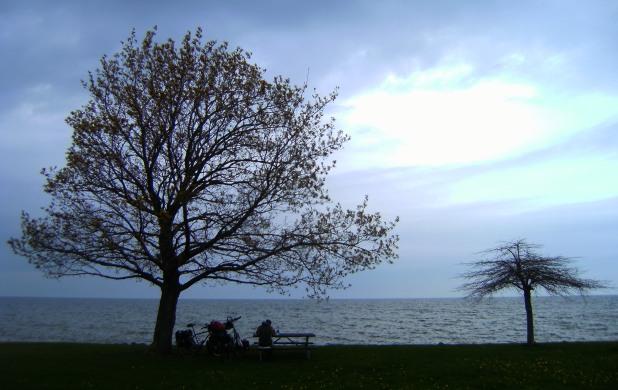 Gewitter-Stimmung mit Bäumen, Bank und See am Hamlin Beach, Ontario-See, USA