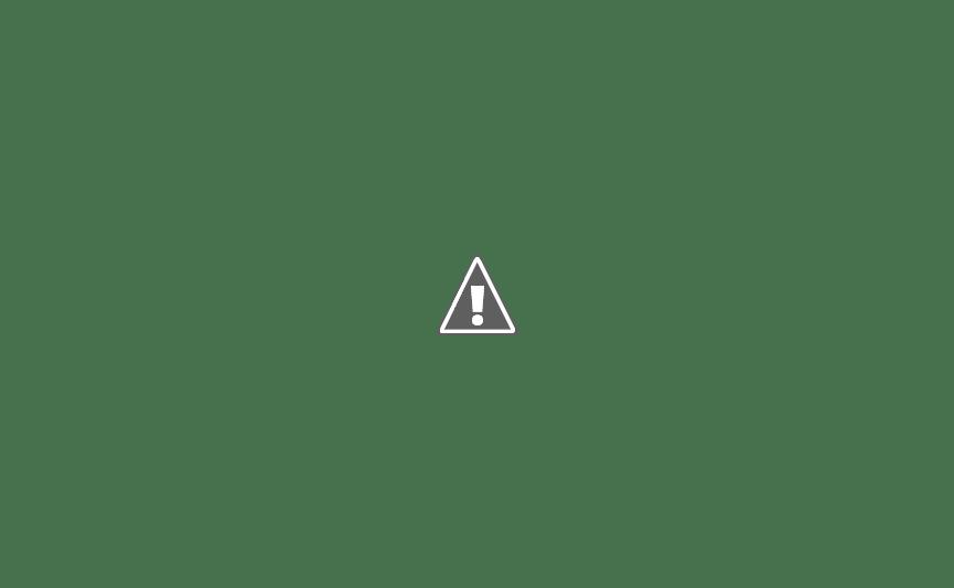 Схема битвы при Рафии