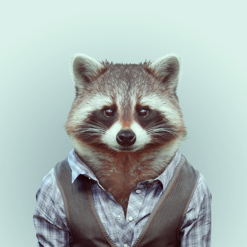 *Zoo Portraits動物時尚秀:正經八百時裝篇! 23