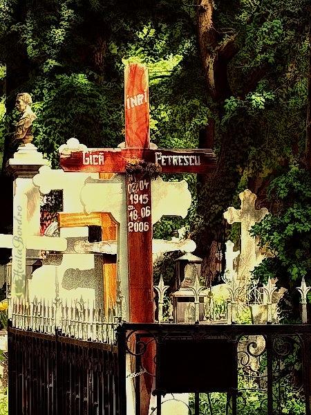 mormant gica petrescu cimitir bellu