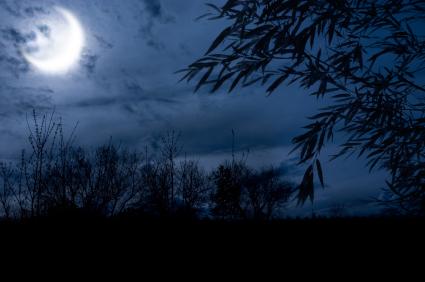Những bài thơ tình viết về Trăng mùa Thu hay nhất