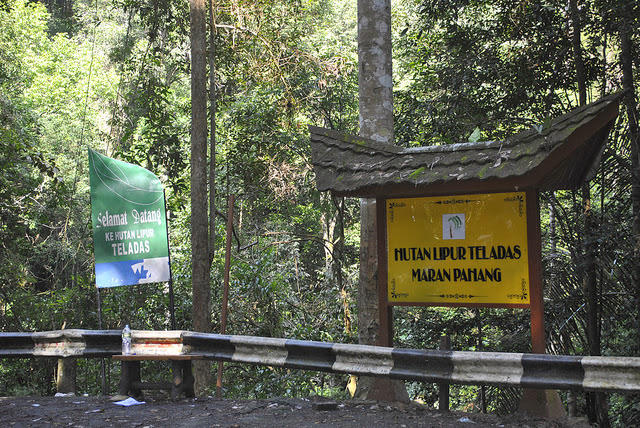 Hutan-Lipur-Teladas-Recreational-Forest