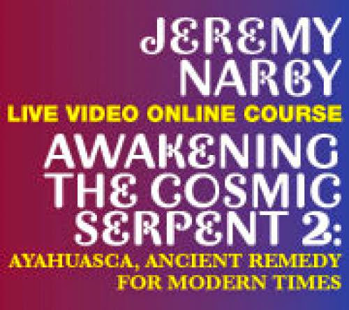 Awakening The Cosmic Serpent Ii Ayahuasca Ancient Remedy For Modern Times