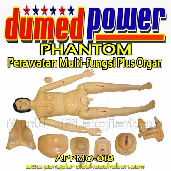 Phantom-Perawatan-Multi-Fungsi-Plus-Organ-Full-Body