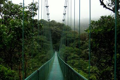 Cloud Forest Suspension Bridge - Monteverde, Costa Rica