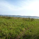 Walking near Green Point Lake Macquarie (389720)