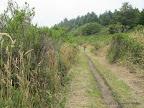 Coastal Trail north of Wildcat Camp