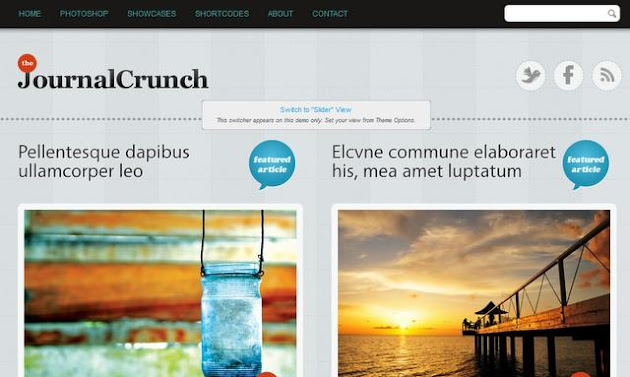 Journal Crunch WP Theme