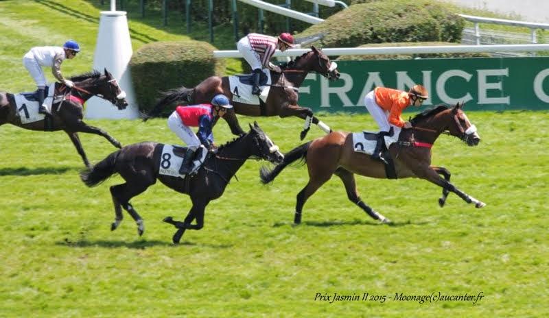 Photos Auteuil 22-05-2015 IMG_0584