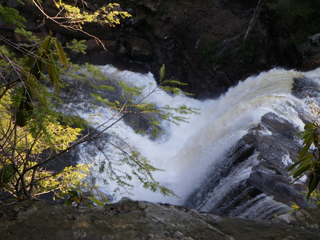 Ever seen Blackwater Falls from river left? It looks a lot taller.