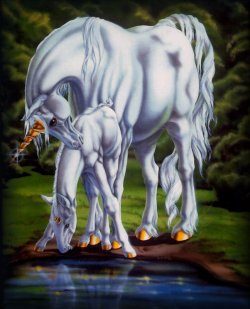 unicorn_feb07.jpg