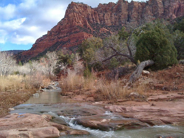 La Verkin Creek Trail (15 Best Hikes in Zion National Park).