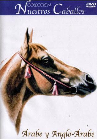 Nuestros caballos [DVDRip][Espa�ol][2001][5/5]