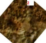 0027mr0129005000e111_dxxx.jpg