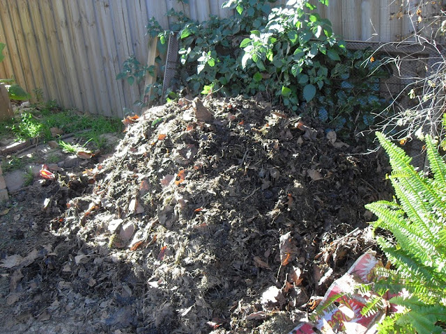 This pile of compost is 1 month old
