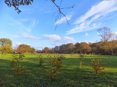 Land by the River Hundred at Aldringham