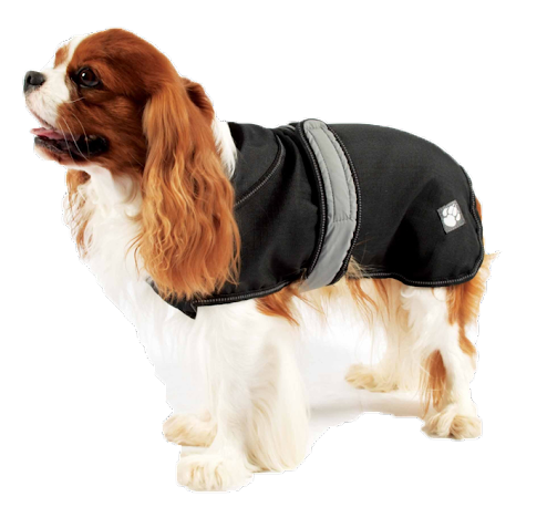 Luxury Designer Waterproof Dog Coats Stylish Dog Coats