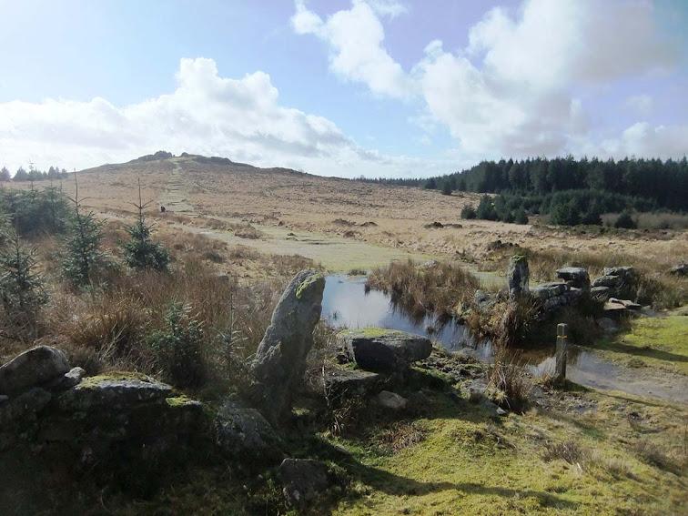 Bellever Tor view Dartmoor