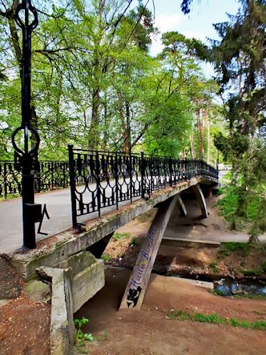 pod parcul de sub arini sibiu