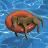 Steve Sims avatar image