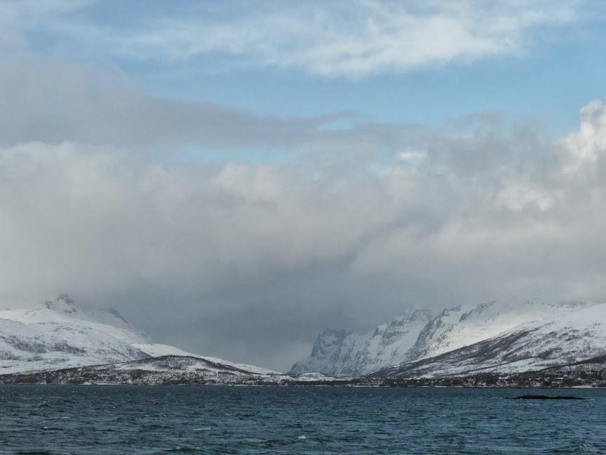 Norvège mars 2014 SAM_1539