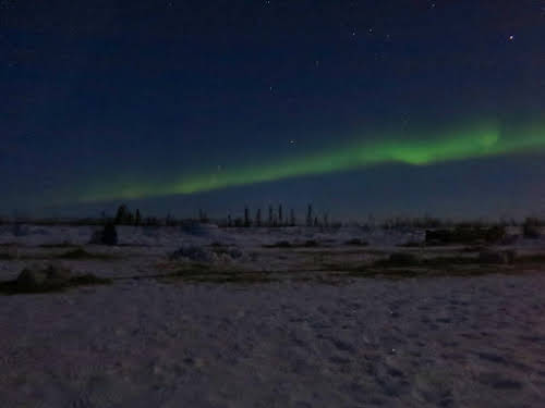 Northern Lights sur Jimmy Lake camp