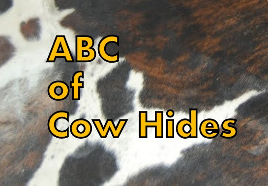 Why get a Cow Hide Rug ?