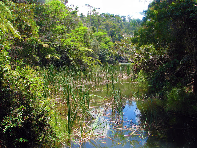 صور من مدغشقر Madagascar 14688075773