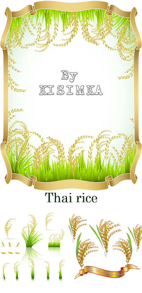 Stock: Thai rice