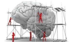 Teenage Brain Under Construction Workshop
