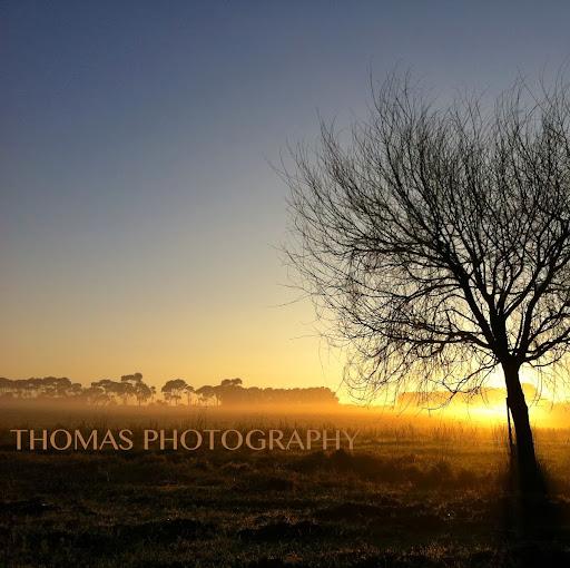 Thomas Sampson