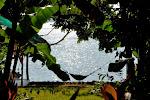 El Nido: guesthouse Tree Tops